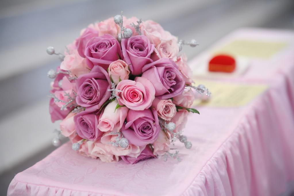 Quên mất việc chăm sóc cho những bông hoa
