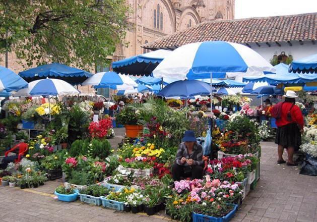 Hàng chục gian hàng bày bán các loại phong lan sặc sỡ, hoa ly và những bông hồng khổng lồ xinh đẹp