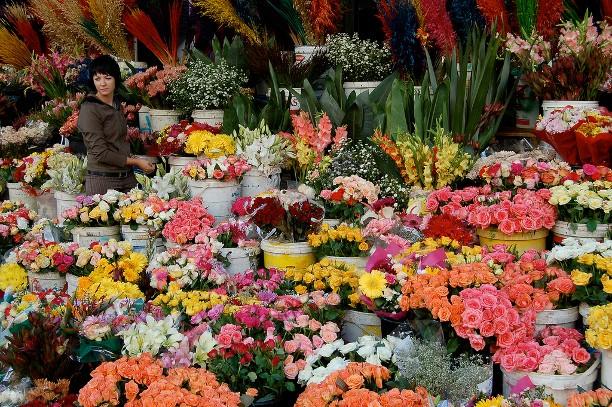 những người phụ nữ bán hoa ở đây luôn tươi cười khi chào đón khách đến xem và mua