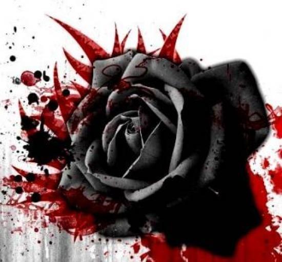 ý nghĩa của hoa hồng đen