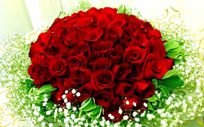 Hoa hồng tượng trưng cho tình yêu mãnh liệt và sự lãng mạn