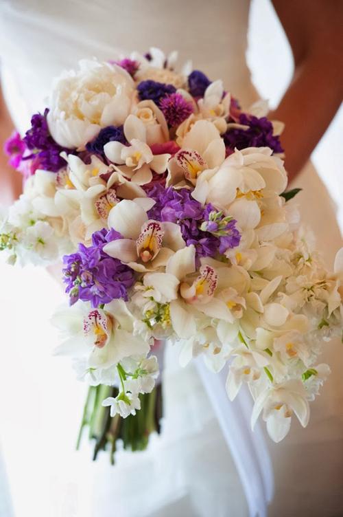 Tình yêu vĩnh cửu từ hoa hồng tím