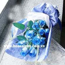 Hoa hồng xanh dương