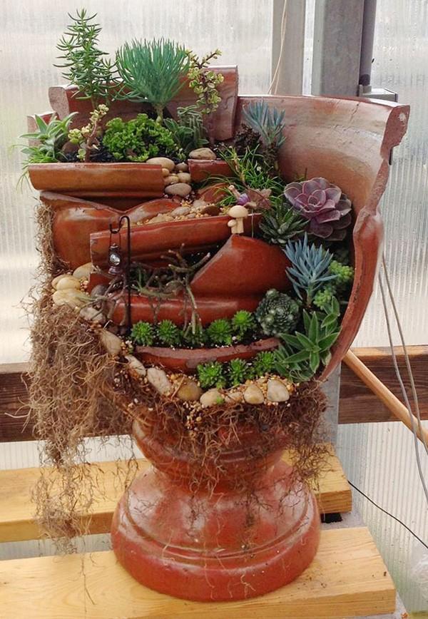 Đẹp lung linh với cách trồng hoa trong chậu hoa bị vỡ