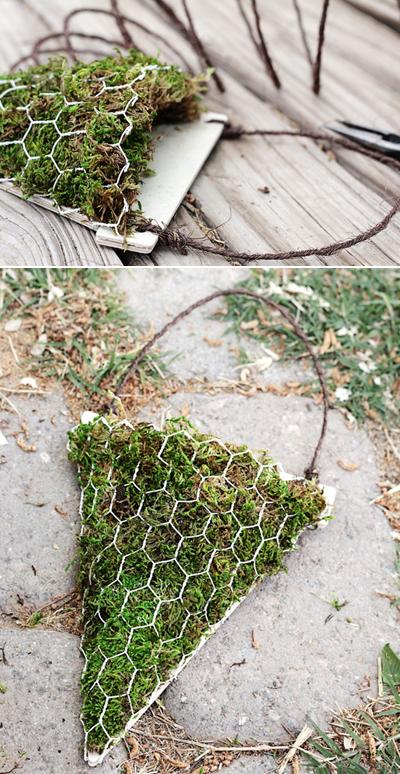 Hướng dẫn trồng hoa treo độc đáo cho căn nhà của bạn