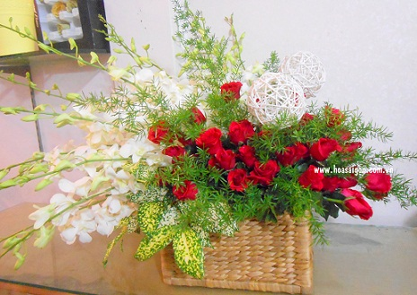 Hoa hồng đỏ kết hợp với lan trắng thể hiện lời chúc thành công và hạnh phúc